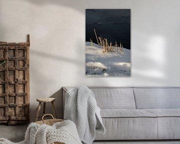 Minimalistisch Winter Wonderland van HappyTravelSpots