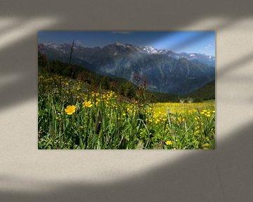 Südtiroler Bergpanorama von Martina Weidner
