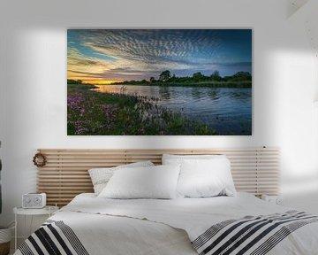 Uiterwaarden aan de Lek van Ronald Bergkamp Nature Photography