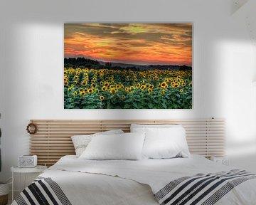 Zonnebloemen met zonsondergang van Marcel de Groot