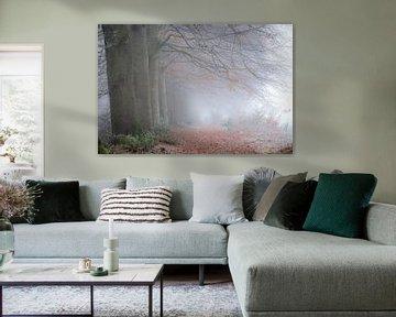 Mistige morgen in het bos op landgoed Mataram van Eelke Brandsma