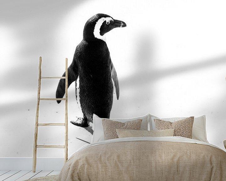 Beispiel fototapete: Pinguin von Katrin Engl