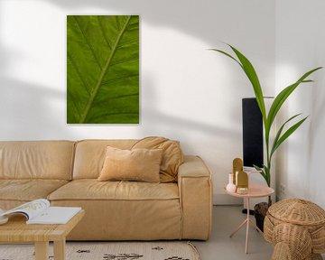 Groen blad van Katrin Engl