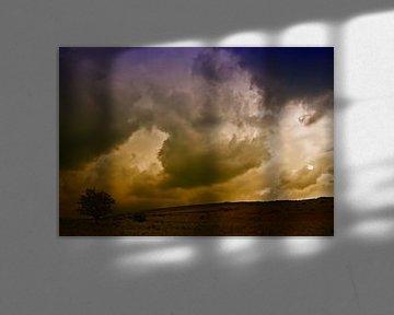 Donker in Dartmoor van Jack Tol
