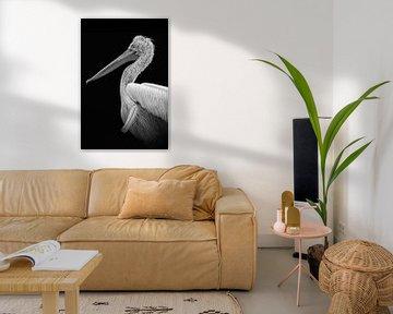 Portrait Pelikan in schwarz und weiß von Marjolein van Middelkoop