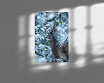 Eine unerwartete Erscheinung im verschneiten Wald von Jouke Wijnstra Fotografie