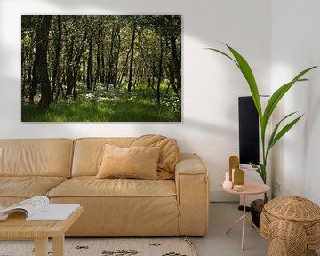Silhouetten in een bos van Ewan Mol