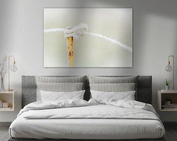 Frozen van Frans Scherpenisse