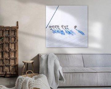 Blauwe schaduw van Jan Krijbolder