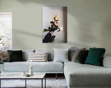 Die schöne Rose. von Moniek Kuipers