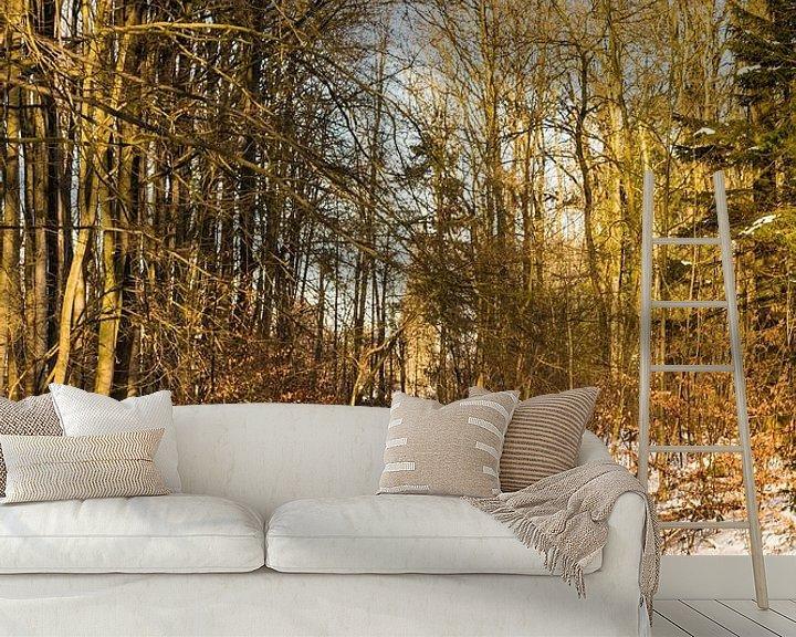 Impression: la forêt en boucle d'eau en hiver sur ChrisWillemsen