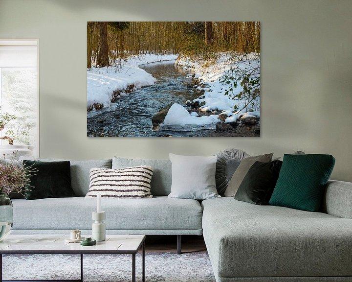 Impression: le waterloopbos avec une rivière en hiver sur ChrisWillemsen