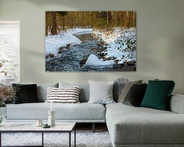 het waterloopbos met een riviertje in de winter