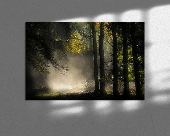 Sfeerimpressie: Feeëriek van Jan Paul Kraaij