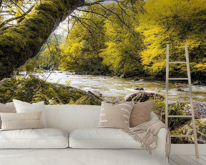 Sfeerimpressie behang: Herfstsfeer aan de rivier Emblève in de Ardennen van Peschen Photography