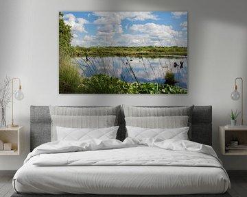 Beek met wolk reflectie van Martine Moens