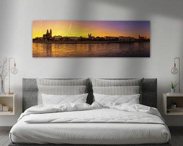 Panorama de l'horizon de Magdebourg Coucher de soleil