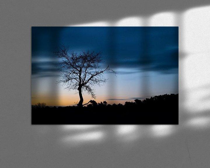 Sfeerimpressie: Silhouet van een boom van Mark Bolijn