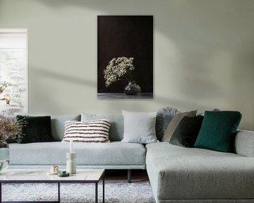 Foto print   Gipskruid   Gypsophila   Modern stilleven   Botanisch  