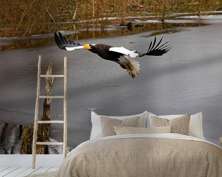 Beispiel fototapete: Riesenseeadler von Robin Scholte