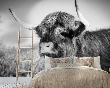 Portret van een Schotse Hooglander van Wendy Tellier - Vastenhouw