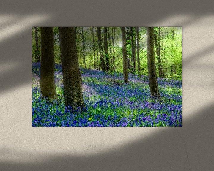 Sfeerimpressie: Lentesfeer met boshyacinten  en Blue bells van Peschen Photography