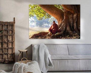 Monnik onder een boom van Antwan Janssen