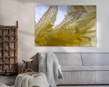 Gelbe Chrysantheme mit Eisstrukturen