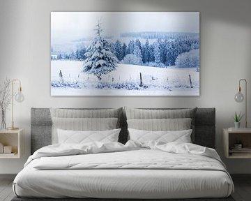 Winterlandschap van Thomas Procek
