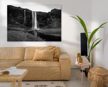 Seljalandsfoss zwart-wit van Louise Poortvliet