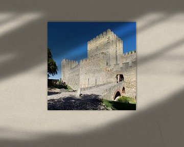 Lissabon: in het Castelo de S. Jorge