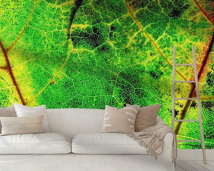 Sfeerimpressie behang: Herfstblad met nerven van Carola Schellekens