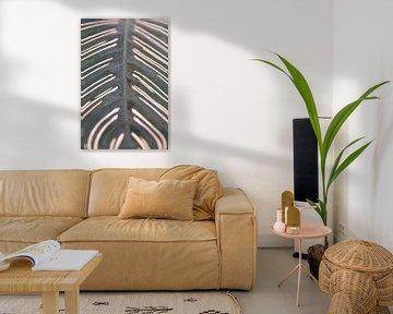 Muster auf einem Blatt in Farbe. von Christa Stroo fotografie