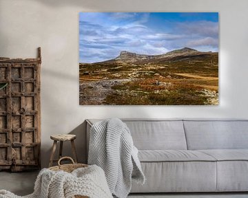 In de bergen van Rondane