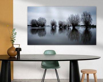 Hoogwater uiterwaarden Rijn van Eddy Westdijk