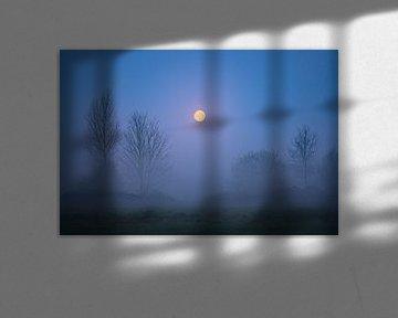 La pleine lune sur Jeroen Lagerwerf