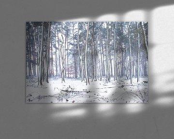 Besneeuwde bomen van Maaike Munniksma