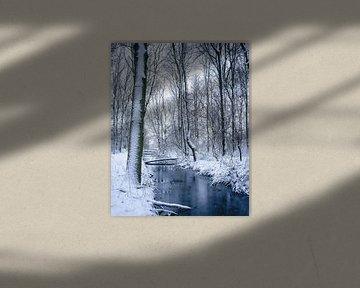 Winterwonderland in The Netherlands van Sonny Vermeer