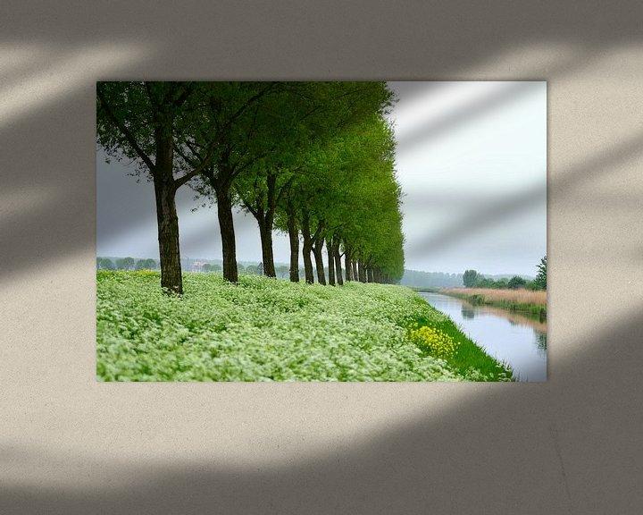 Sfeerimpressie: Fluitenkruid van Arno-Jan Boere