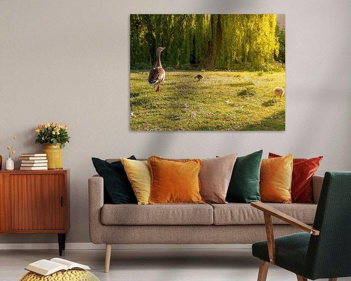Sfeerimpressie: Moedergans met kuikens in park van Charlotte Dirkse