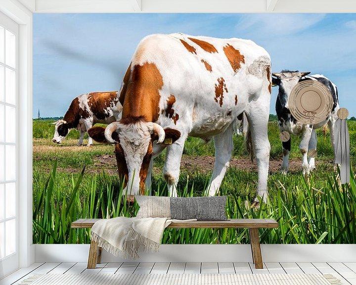 Sfeerimpressie behang: Koeien in weiland van Charlotte Dirkse
