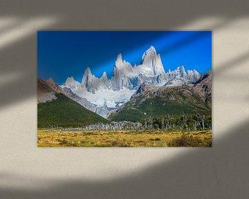 Fitz Roy berg, El Chalten, Patagonië, Argentinië van Dieter Meyrl