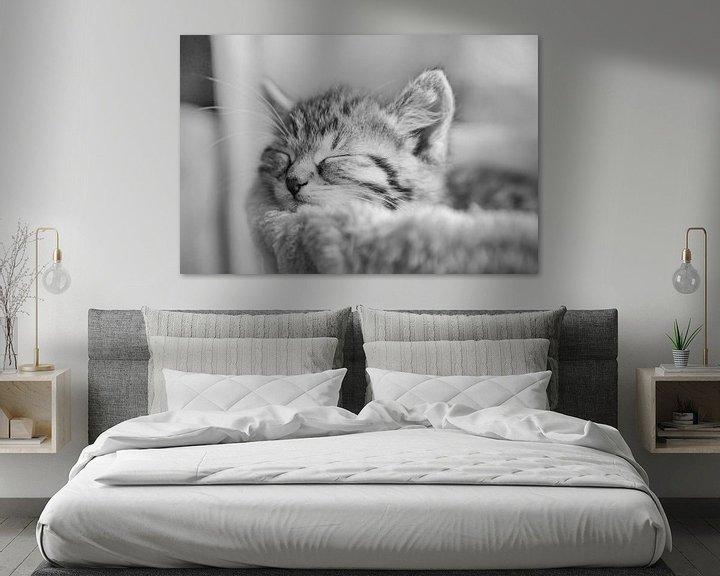 Beispiel: schlafende Katze in schwarz weiß von Urlaubswelt