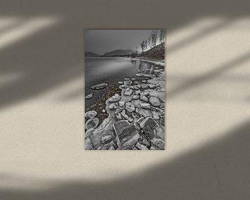 IJzige rotskust en een heuvel met bomen in de late van Michael Semenov