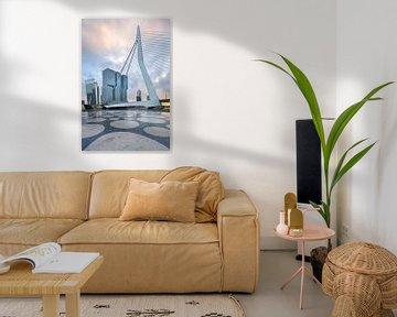 Erasmusbrug van Prachtig Rotterdam