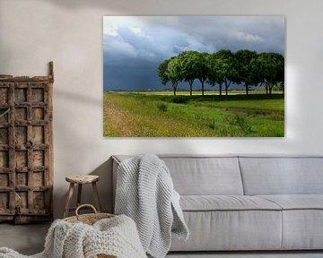 Onweersbui boven de Eempolder in Nederland, landschapsfoto in groene en blauwe tinten
