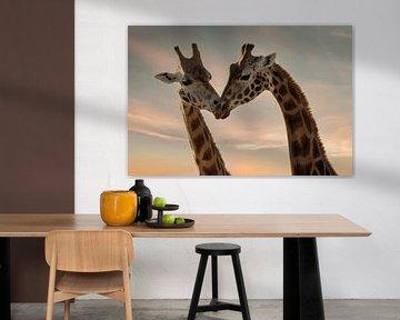 Giraffen lieben von Marjolein van Middelkoop