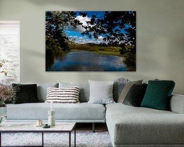 Doorkijk op de natuur van Egmond van Annette van Dijk-Leek