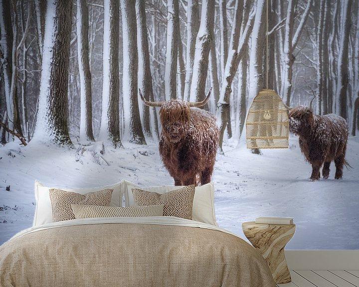 Sfeerimpressie behang: Koude koeien van Pascal Raymond Dorland