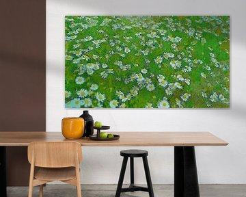 Gänseblümchen - Wilde Gänseblümchen in der Natur von Schildersatelier van der Ven